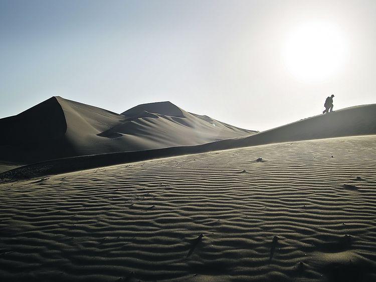 Mysterius Nazca Lines