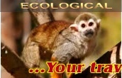 Ecological Tourism