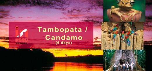 National Reserve Tambopata Candamo - Madre de Dios