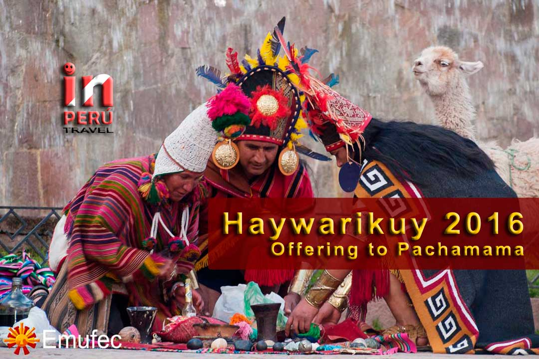 Haywarikuy 2016 - Offering to Pachamama